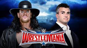 undertaker vs Shane McMahon